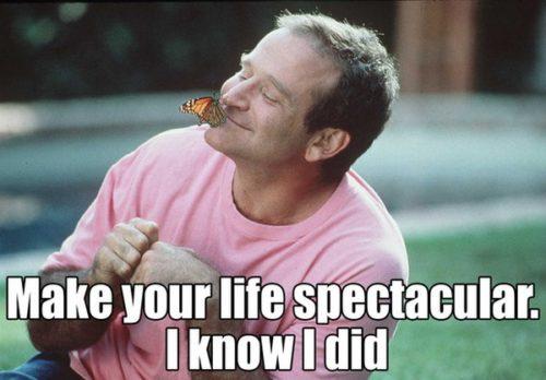 In Memoriam: Robin Williams